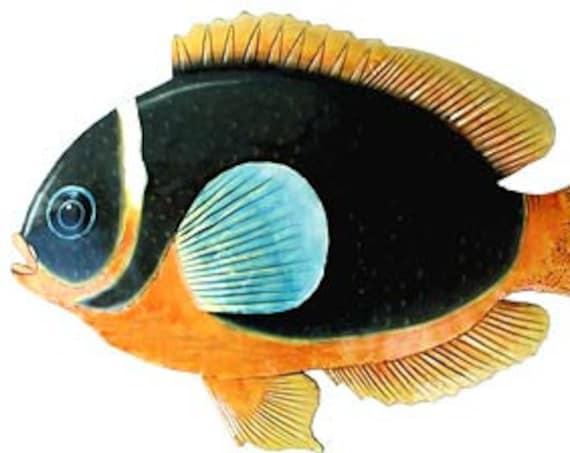 "TROPICAL FISH Art, Island Decor, Tropical Fish Metal Art, Painted Metal Wall Art, 34"", Fish Wall Hanging, Metal Decor, Beach Decor, K-143-34"