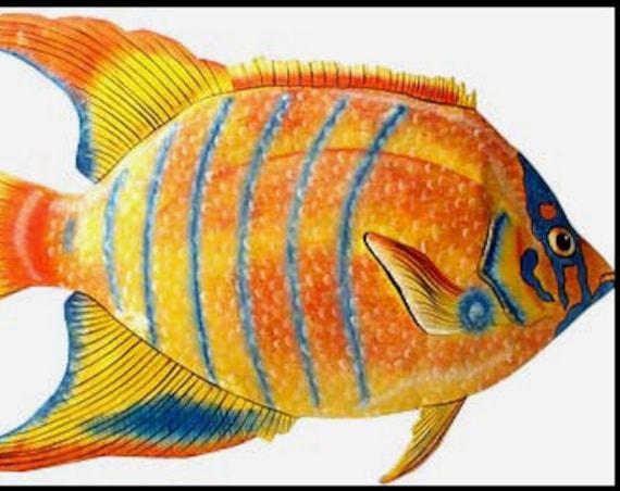 TROPICAL FISH, Painted Metal Art, Metal Wall Hanging, Metal Wall Art, Coastal Wall Decor, Tropical Decor, Garden Art, Garden Decor - K-147-R