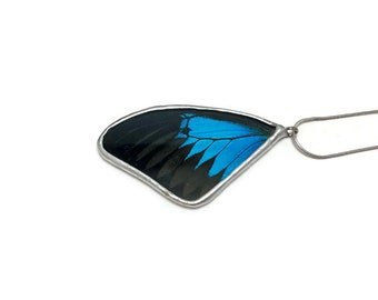 Real butterfly Jewelry, butterfly pendant, real butterfly necklace, Insect jewelry, real butterfly wing, insect pendant, Glass Pendant
