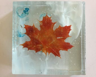 Fused glass art, glass maple leaves, leaves, Glass art, limited edition art, glass paper weight, glass paper weight, home decor