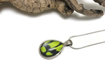 Butterfly wing jewelry, glass jewelry,Real Butterfly jewelry, butterfly wing Necklace, insect jewelry, real butterfly pendant, free shipping