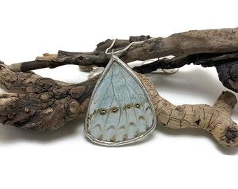 Butterfly Necklace, glass pendant, Morpho butterfly, insect jewelry, glass, butterfly jewelry, butterfly pendant, handmade butterfly jewelry
