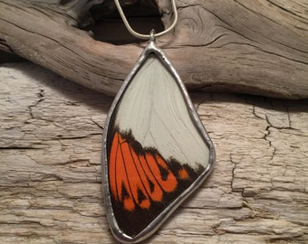Real butterfly jewelry, real butterfly necklace, glass necklace, butterfly pendant, real butterfly wing, insect jewelry, glass pendant
