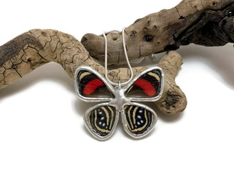 Real butterfly, real butterfly jewelry, handmade butterfly jewelry, real butterfly pendant, Real Butterfly Wing Necklace, butterfly Pendant