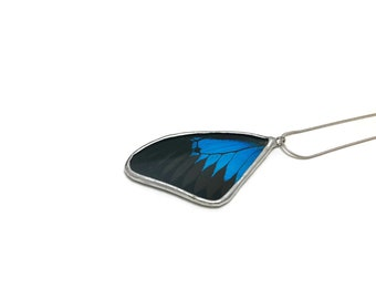 Real butterfly jewelry, real butterfly wing, butterfly necklace, butterfly pendant, glass necklace, insect necklace, insect jewelry, glass