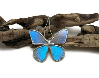 Real Butterfly Wing Necklace Blue Morpho Pendant