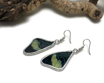 Real butterfly Jewelry, Butterfly earrings, glass earrings, insect jewelry, real butterfly Wing, insect earrings, glass jewelry, butterfly
