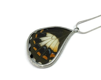 Real Butterfly jewelry, real butterfly pendant, real butterfly wing, real butterfly necklace, glass pendant, insect jewelry, insect pendant