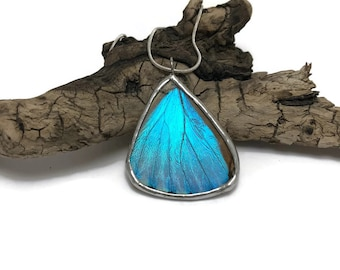 butterfly jewelry, Real butterfly wing, Butterfly Necklace, Blue Morpho Butterfly, butterfly pendant, real insect jewelry, butterfly art