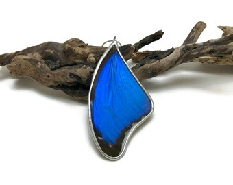 Real Butterfly jewelry, pendant, butterfly, butterfly Wing Necklace, Blue Morpho Pendant, butterfly wing pendant, butterfly necklace