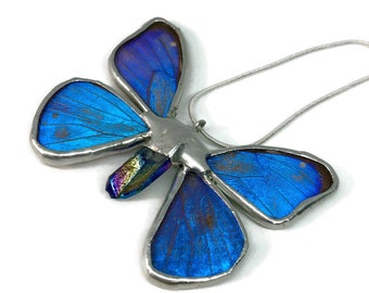 Real butterfly jewelry, real butterfly pendant, Real Butterfly Necklace, insect jewelry, insect pendant, Insect necklace, glass jewelry