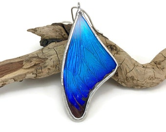 Real Butterfly jewelry, insect pendant, butterfly pendant, real butterfly necklace, Real butterfly wing, butterfly Pendant, insect Jewelry