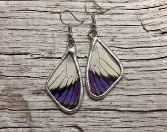 Real Butterfly earrings, butterfly jewelry, glass earrings, insect jewelry, insect earrings, butterfly Earrings, real butterfly wing, glass