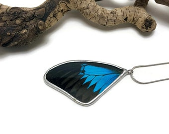 Real Butterfly necklace, Real Butterfly jewelry, real butterfly wing, butterfly pendant, glass jewelry, glass necklace, insect Pendant