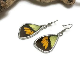 Butterfly earrings, butterfly jewelry, insect jewelry, handmade, Dangke Earrings, butterfly jewelry, butterly wing earrings, glass earrings