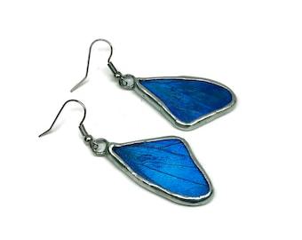 Butterfly jewelry, Real Butterfly earrings, insect jewelry, butterfly earrings, insect earrings, Blue Morpho Earrings, butterfly wing, glass