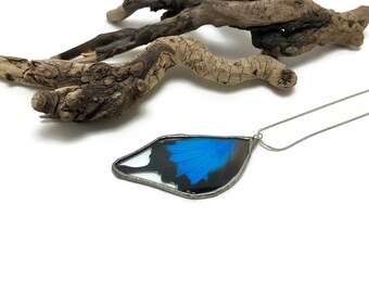 Jewelry, butterfly, butterfly pendant, real butterfly, Real Butterfly jewelry, real butterly wing Necklace, Blue papilio ulysses Pendant