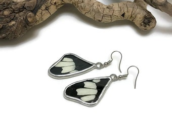 Real Butterfly earrings, glass earrings, glass earrings, insect jewelry, butterfly Earrings, butterfly jewelry, butterly wing earrings