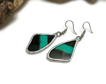 Real butterfly Jewelry, real butterfly wing, Butterfly earrings, glass earrings, glass jewelry, dangle earrings, Glass, insect jewelry