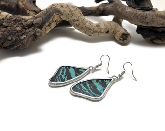 Real butterfly jewelry, real butterfly wing, Butterfly earrings, insect jewelry, Glass Earrings, insect earrings, butterfly, glass jewelry
