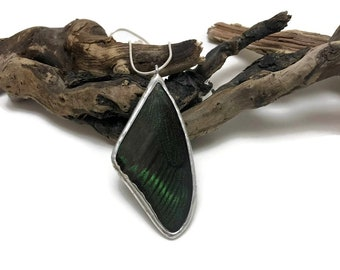 Real Butterfly jewelry, butterfly pendant, real butterfly wing, glass necklace, insect pendant, Glass jewelry, insect jewelry, butterfly
