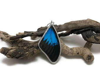 Real Butterfly jewelry, real butterly Necklace, butterfly pendant, real butterfly wing, Insect necklace, glass Pendant, insect jewelry