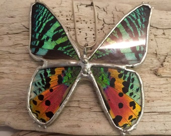 butterfly jewelry, butterfly pendant, insect jewelry, butterfly necklace, real moth pendant, sunset moth Pendant, glass necklace