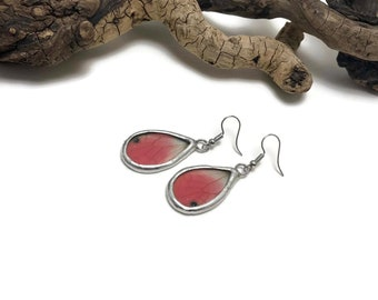 Real Butterfly earrings, glass earrings, insect jewelry, handmade butterfly Earrings, butterfly jewelry, butterfly wing earrings