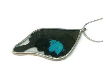 Real Butterfly, real butterfly wing, real butterfly jewelry, real butterfly Pendant, insect jewelry, real insect pendant, glass pendant
