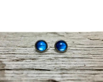 Real Butterfly jewelry, butterfly studs, morpho butterfly, stud earrings, real butterfly earrings, insect earrings, glass, glass earrings