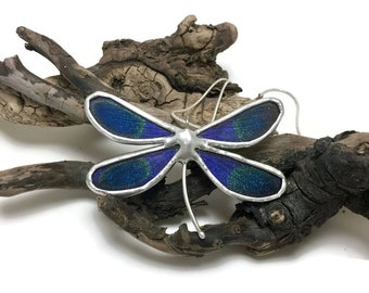 dragonfly necklace, dragonfly jewelry, real butterfly pendant, glass necklace, real dragonfly wing Necklace, insect necklace, insect jewelry