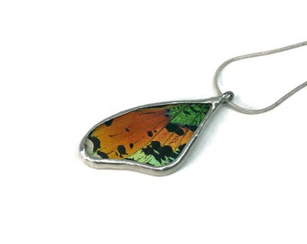Butterfly jewelry, handmade real butterfly pendant, real butterfly necklace, Real moth jewelry, real moth wing Necklace, sunset moth Pendant