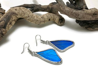 Real Butterfly earrings, butterfly, insect jewelry, handmade, Blue Morpho Earrings, butterfly jewelry, butterly wing, morpho Rhetenor