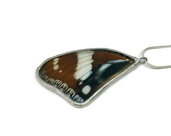 Real Butterfly jewelry, real butterfly wing, real butterfly pendant, Real Butterfly Necklace, glass pendant, insect jewelry, insect necklace