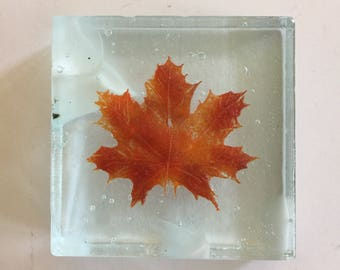 Fused glass, Fused Glass art, Canadian art, glass paper weight, maple leaf, paper weight, glass home decor, fused glass sculpture