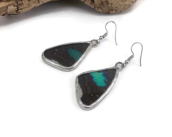 Butterfly earrings, glass earrings, insect earrings, glass, insect jewelry, butterfly, butterfly jewelry, real butterfly wing, butterfly