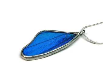 Real butterfly wing, Real butterfly pendant, real butterfly jewelry, Real Butterfly Necklace, Insect jewelry, insect pendant, glass jewelry