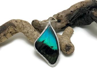 butterfly necklace, butterfly jewelry, butterfly pendant,insect jewelry, glass, insect necklace, Butterfly Wing Necklace, glass pendant