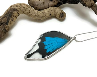 Real butterfly pendant, butterfly necklace, real butterfly wing, Butterfly jewelry, insect Necklace, glass necklace, glass butterfly