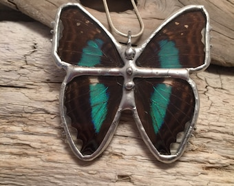 Butterfly Necklace, Real Butterfly Jewelry, butterfly Pendant, insect pendant, real butterfly, handmade butterfly pendant, butterly wing
