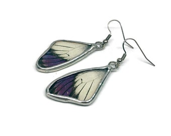 Real Butterfly jewelry, real butterfly wing, real butterfly earrings,  glass earrings, insect jewelry, insect earrings, Glass jewelry, glass