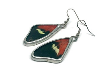 Real butterfly wing, real butterfly Jewelry, Real Butterfly earrings, insect jewelry, Glass Earrings, insect earrings, butterfly earrings