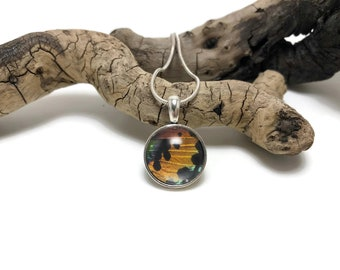 butterfly necklace, Real Butterfly jewelry, butterfly Wing Necklace, butterfly pendant, Sunset moth pendant, insect pendant, glass pendant