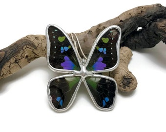 Real Butterfly Wing Necklace Graphium weiskei Pendant