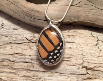 Butterfly wing pendant, monarch butterfly pendant, butterfly jewelry, Real Butterfly Wing Necklace, butterfly Pendant, insect jewelry