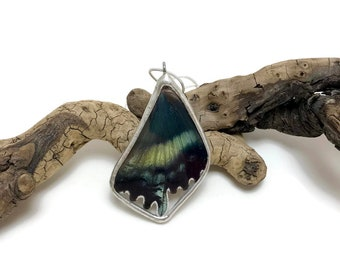 Real Butterfly wing jewelry, handmade butterfly pendant, real butterfly necklace, Real moth jewelry, real moth wing Necklace, moth Pendant