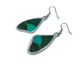 Real butterfly jewelry, Real Butterfly earrings, insect earrings, nsect jewelry, glass jewelry, real butterfly wing, glass earrings