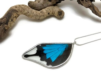 Real Butterfly jewelry, real butterly Necklace, real butterfly pendant, real butterfly wing, Insect necklace, glass Pendant, insect jewelry