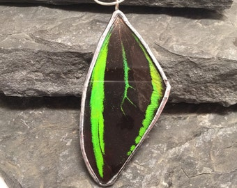 Butterfly pendant, Butterfly Necklace, real butterfly wing, glass pendant, handmade butterfly jewelry, butterfly wing, insect Pendant