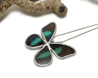 Butterfly Jewelry, Real Butterfly Necklace, butterfly Pendant, insect jewelry, real butterfly wing, handmade butterfly pendant, butterfly